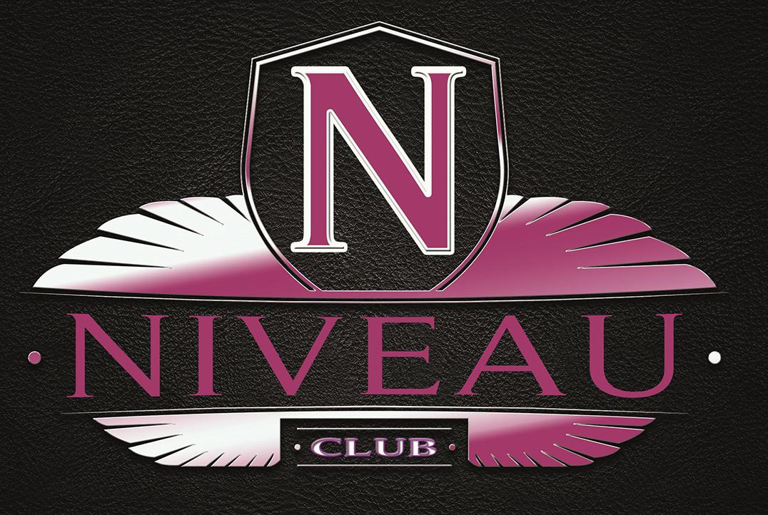 Niveau Logo Web
